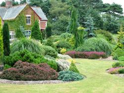 gardening-services2